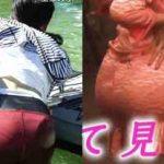 パン線 エロ画像記事10選!生々しい透けパンティーラインハプニング総まとめ!
